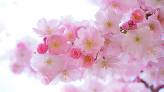 Podsumowanie marca - przegląd wpisów, jakie ukazały się na blogu w marcu