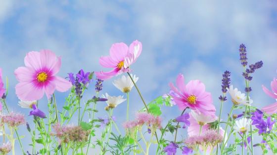 Podsumowanie maja – relacja, testy i opinie