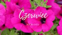 Podsumowanie czerwca – same przyjemności!
