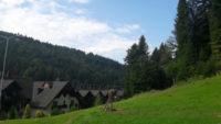 Zielone tereny wokół hotelu Wierchomla
