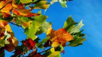 Blogowe podsumowanie września